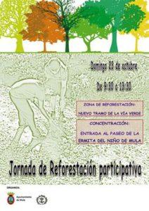 reforestacion